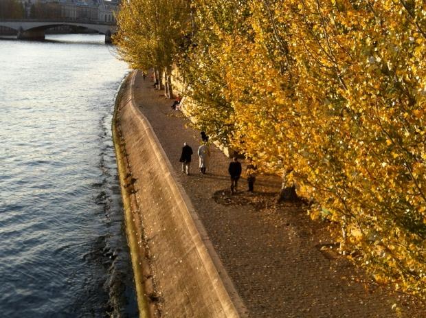 River Seine in Fall