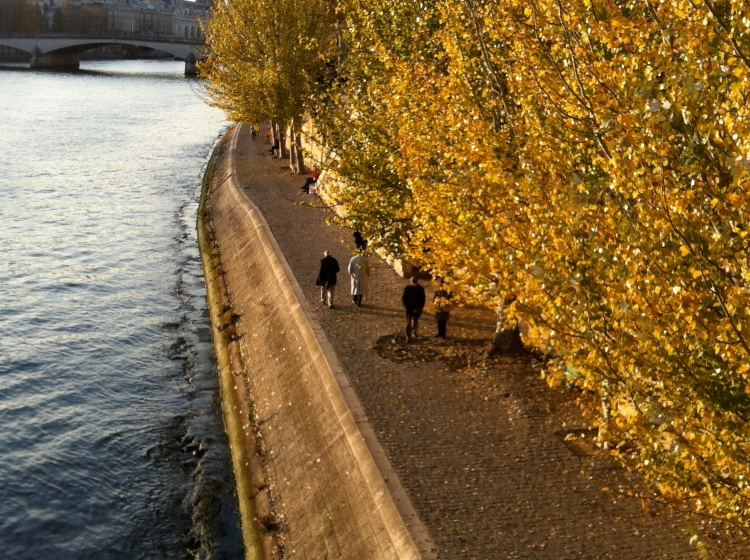 River Seine in Fall