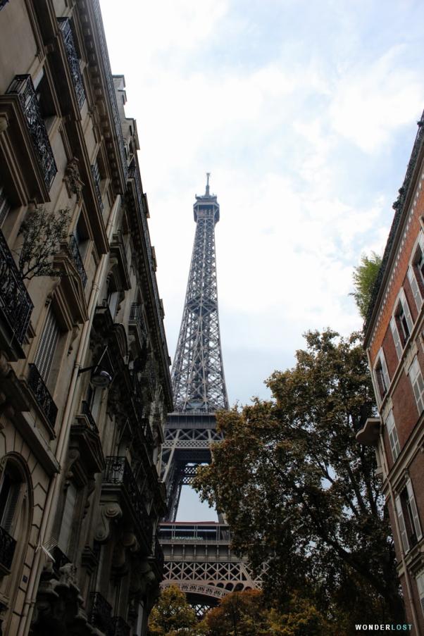 Paris6.png