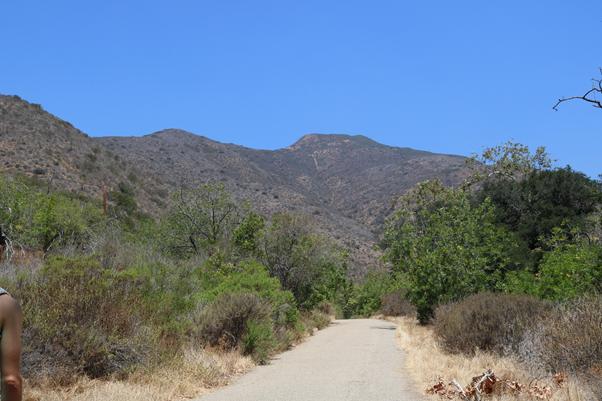 best-running-trails-us